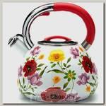 Чайник со свистком Mayer&Boch 23853 3.5 литра, эмалированный