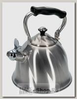 Чайник со свистком Regent inox Tea 93-TEA-29, 2.6 литра