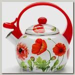 Эмалированный чайник со свистком Mayer&Boch MB-23867 2.2 литра