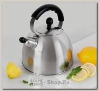 Чайник со свистком TalleR Норман TR-1342, 2.5 литра