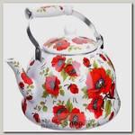 Чайник для кипячения воды Mayer&Boch MB-27989 6 литров, эмалированный